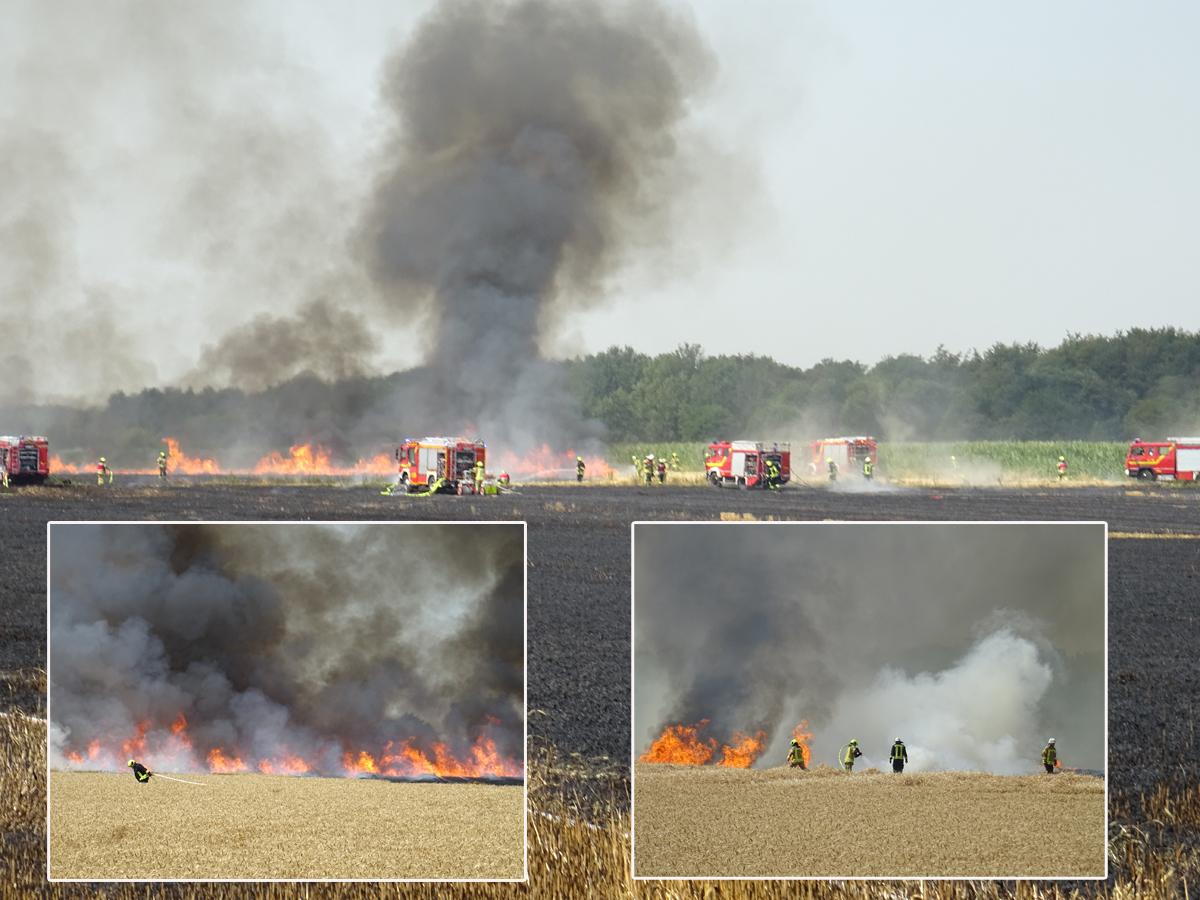 Brand_Rischden